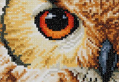 Diamond painting kit Owl